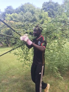 Bashir clears away branches.